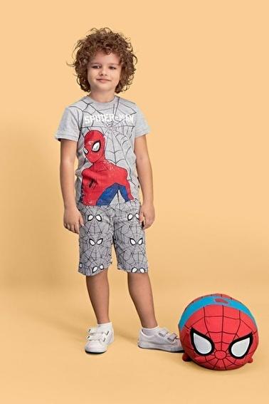 Spider-Man Spider Man Lisanslı Erkek Çocuk Bermuda Takım Gri